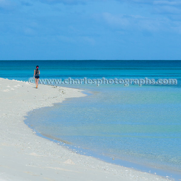 Deserted Island Beach: Charles Cooper Photography